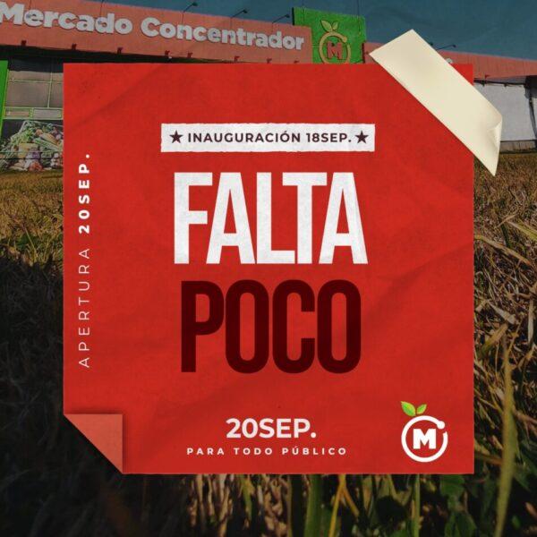 Mercado Header